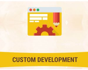 Magento Support Service