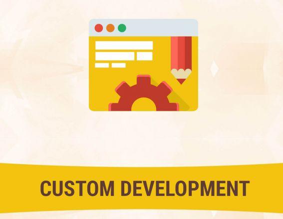 Custom Development Services for Magento