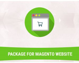 Ecommerce Managed Hosting Packages