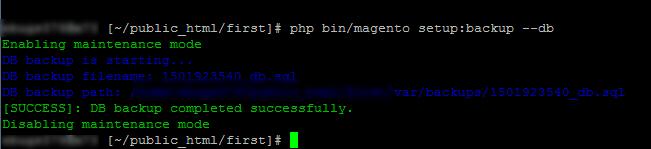 magento 2 database backup